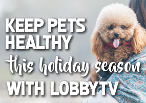 Keeps pets healthy this holiday season with lobbyTV