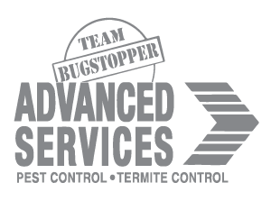Advanced Services - Bugstopper